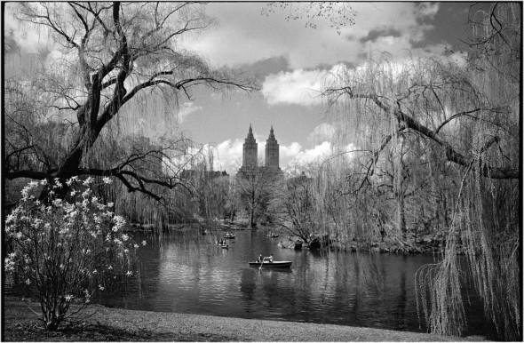 Central-park-lake-rowboat