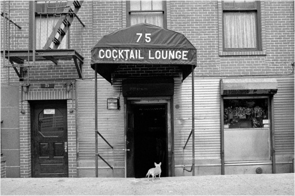 holiday-cocktail-lounge