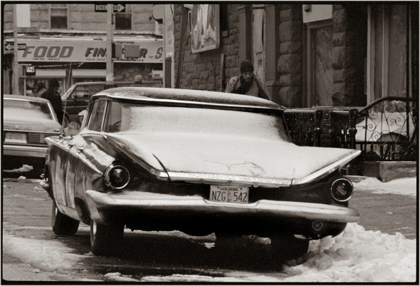 harlem-winter-tailfins-matt-weber