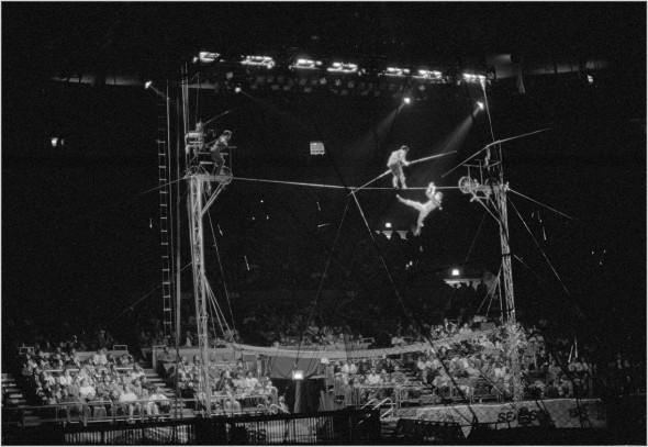 matt-weber-circus