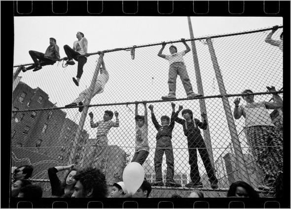 kids on fence