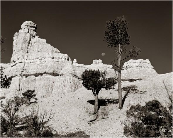 moon and redrock canyon