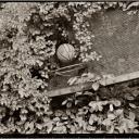 Ancient Basketball Hoop Mt. Sinai N.Y. 1988