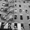 """Stuffed Animals"" East Harlem 1988"