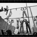 Kids on Fence